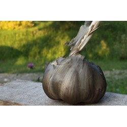 Geräucherter Knoblauch 250 g